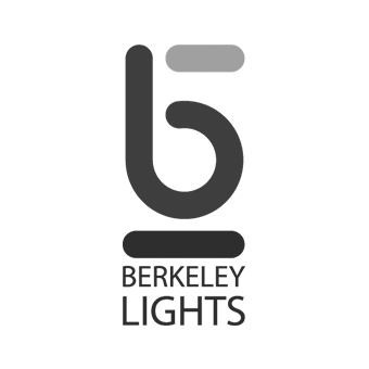 Berkely Lights