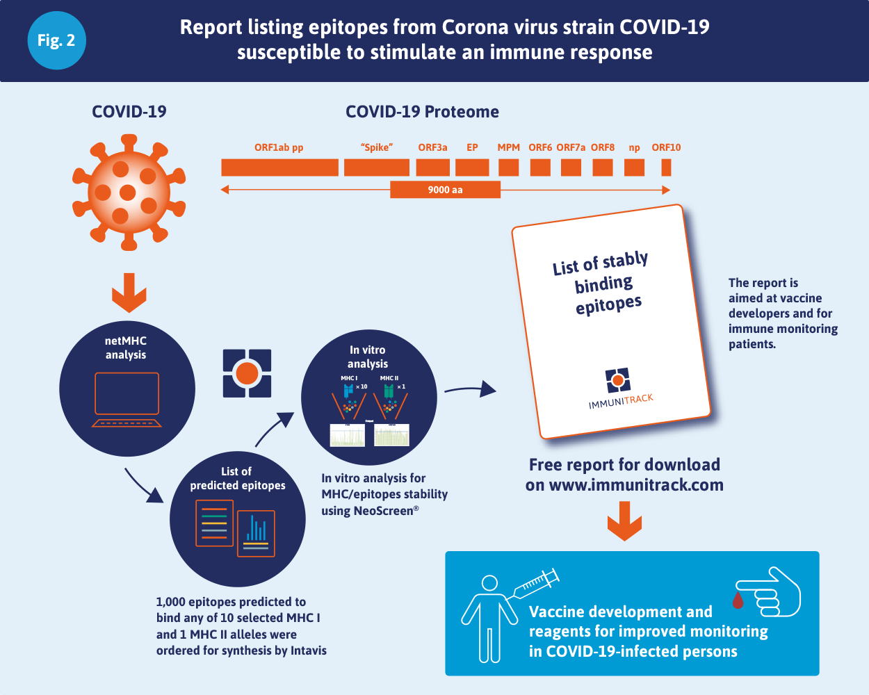 Report listing epitopes from Corona virus strain Covid-19