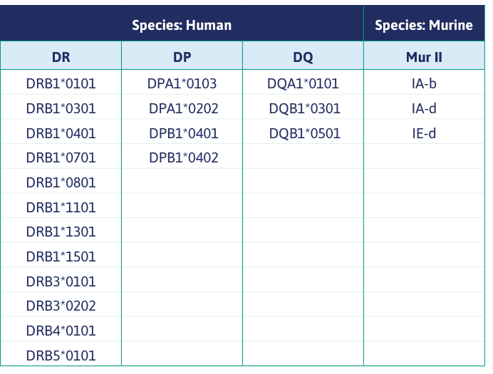 List of available MHC II Alleles from Immunitrack
