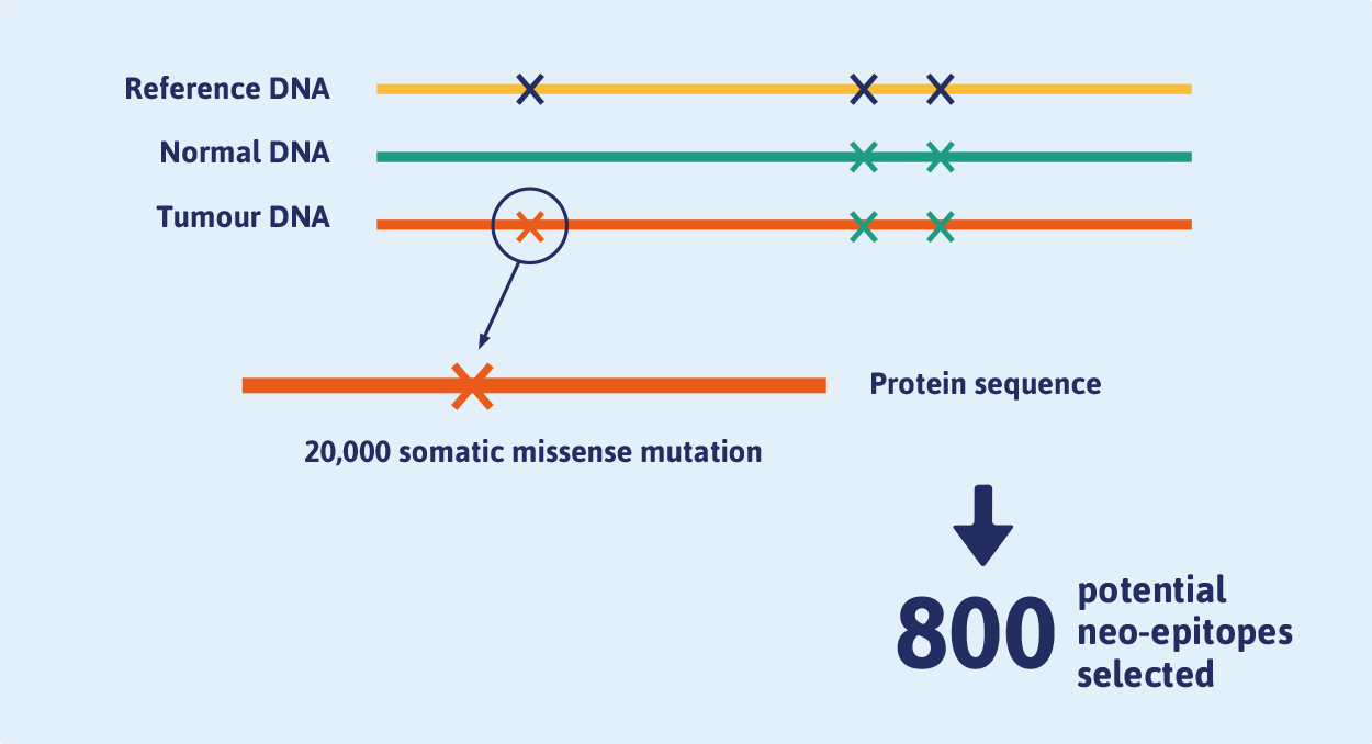 Figure 2. More than 20,000 mutations were identified through variant calling