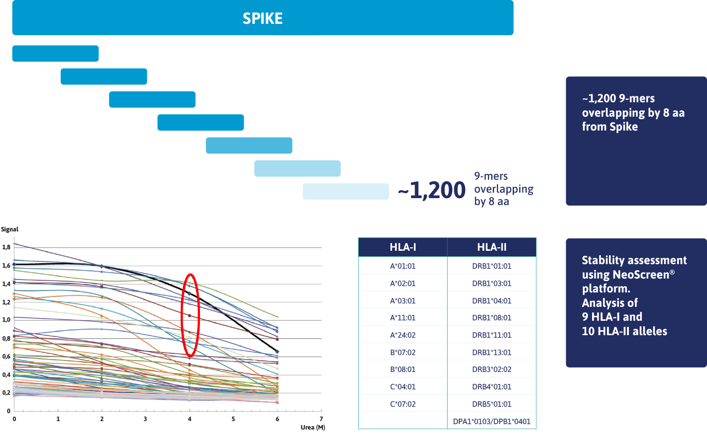 Stability Assessment Spike